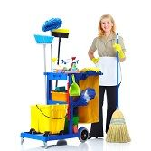home cleaner n1